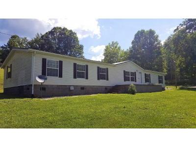 Unicoi Single Family Home For Sale: 519 McCurry Road