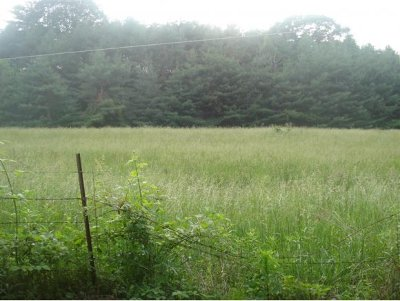 Butler Residential Lots & Land For Sale: Lot #13 Sink Valley Rd