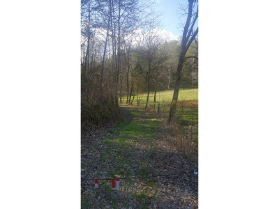 Greene County Residential Lots & Land For Sale: Rabbit Gap Road