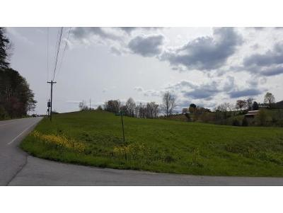Unicoi Residential Lots & Land For Sale: TBD Unicoi Drive