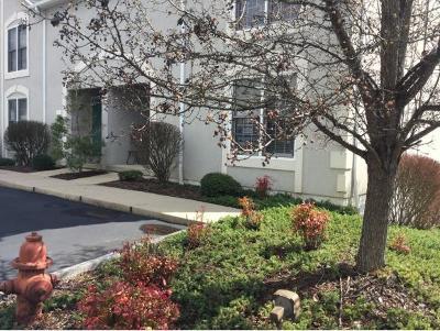 Johnson City Condo/Townhouse For Sale: 140 Bentley Parc #140