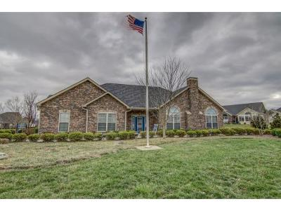 Blountville Single Family Home For Sale: 1434 Hatterdale Farm Rd