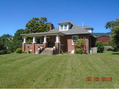 Butler Single Family Home For Sale: 196 McQueen Street