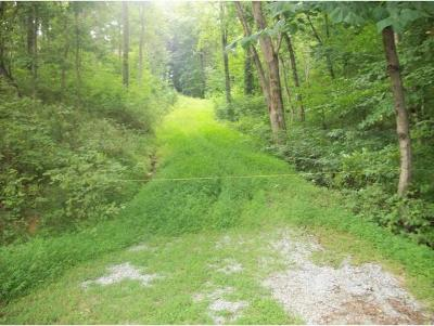 Unicoi Residential Lots & Land For Sale: TR 13 Lakeview Drive