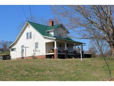 Kingsport Single Family Home For Sale: 428 Bridwell Heights Rd.