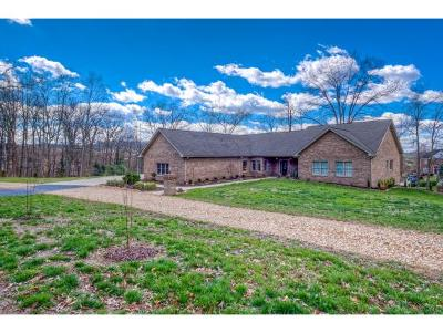 Blountville Single Family Home For Sale: 568 Morse Private Dr
