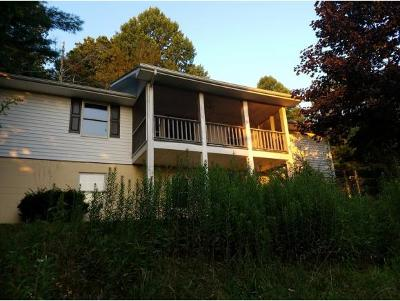 Shady Valley Single Family Home For Sale: 571 Owl Hollow Road