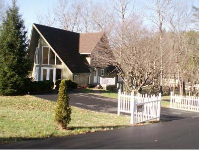 Mountain City Single Family Home For Sale: 607 E. Hillcrest Drive