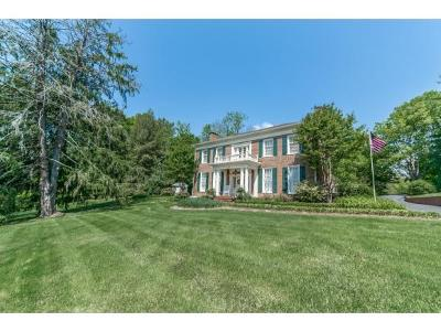Jonesborough Single Family Home For Sale: 102 College Street, West