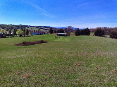 Greene County Residential Lots & Land For Sale: Newport Hwy