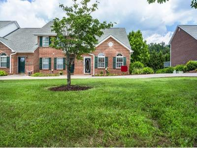 Blountville Condo/Townhouse For Sale: 146 Eagleview Private Drive #146