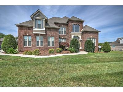Johnson City Single Family Home For Sale: 100 Countryside Drive