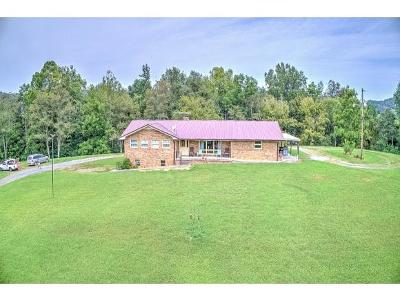 Rogersville Single Family Home For Sale: 212 Jones Cemetery Rd