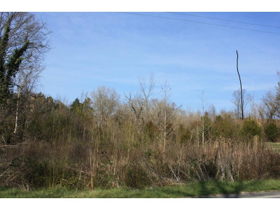 Greene County Residential Lots & Land For Sale: Blue Springs Parkway
