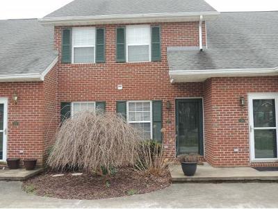 Blountville Condo/Townhouse For Sale: 127 Eagle View Private Drive #127