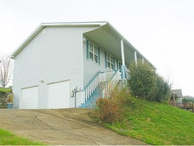 Bluff City Single Family Home For Sale: 1353 Big Springs Rd