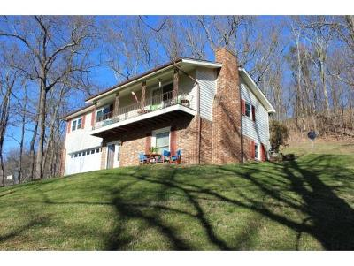 Bristol VA Single Family Home For Sale: $195,900