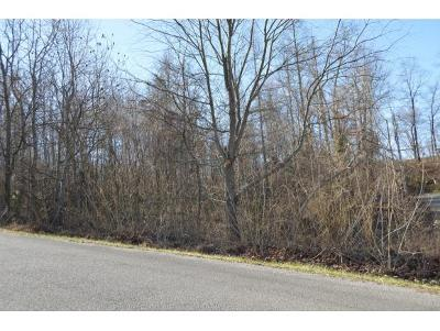 Residential Lots & Land For Sale: Lots 8&1 Emerald Hills Drive