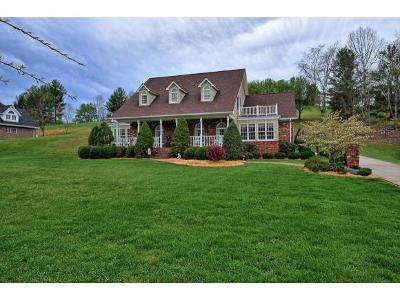 Elizabethton Single Family Home For Sale: 719 Quail Hollow Drive