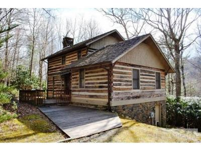 Boone Single Family Home For Sale: 176 Rivers Crest Rd