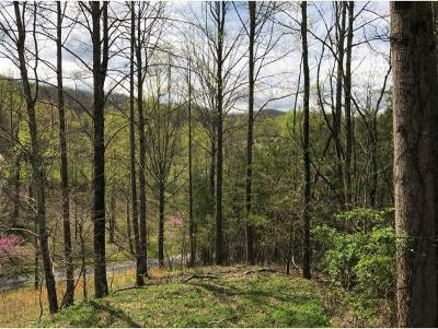 Unicoi Residential Lots & Land For Sale: 171&172 Lakeview Dr