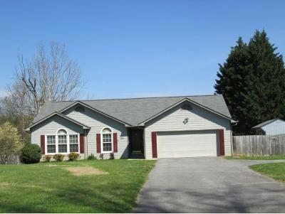 Johnson City Single Family Home For Sale: 159 Flourville Rd