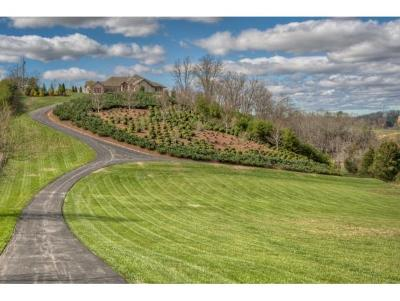 Piney Flats Single Family Home For Sale: 3070 Rocky Springs Rd