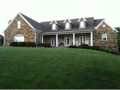 Johnson City Single Family Home For Sale: 204 Strawberry Fields