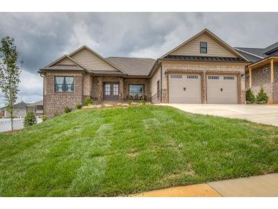 Johnson City Single Family Home For Sale: 273 Laurel Canyon