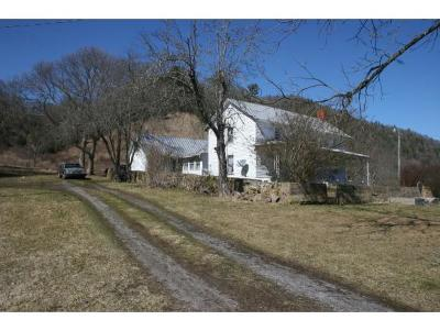 Mountain City Single Family Home For Sale: 4246 Roan Creek Road
