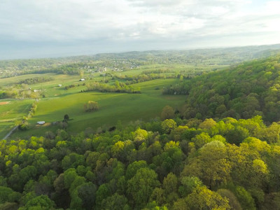 Blountville Residential Lots & Land For Sale: TBD Lynn Rd