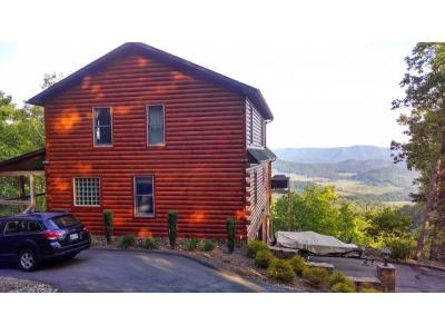 Mountain City Single Family Home For Sale: 118 Ridge View Lane