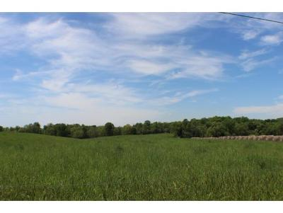 Blountville Residential Lots & Land For Sale: P117.80 Lynn Rd