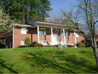 Kingsport Single Family Home For Sale: 1636 Rock Springs Road