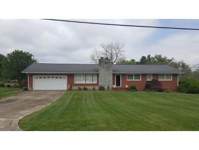Johnson City Single Family Home For Sale: 108 Apache Drive
