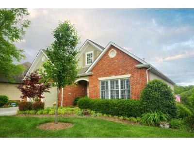 Johnson City Single Family Home For Sale: 1002 Hunters Lake