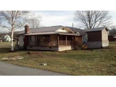Roan Mountain TN Single Family Home For Sale: $89,900