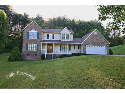 Mountain City Single Family Home For Sale: 199 East Holy Hill Road