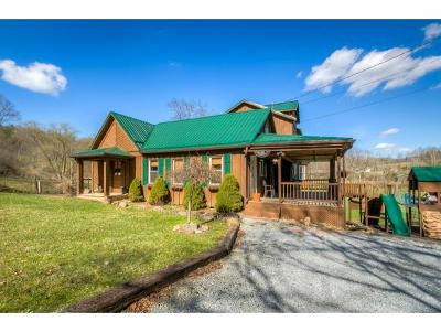 Roan Mountain Single Family Home For Sale: 136 Beecher Holtsclaw