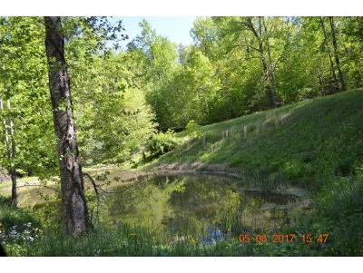 Unicoi Residential Lots & Land For Sale: Lady Bug Lane