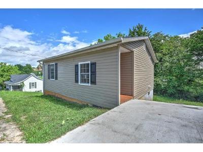 Bristol VA Single Family Home For Sale: $49,900