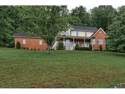 Bluff City Single Family Home For Sale: 264 Sells Rd