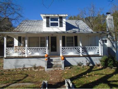 Abingdon Single Family Home For Sale: 23165 Brumley Gap Rd.