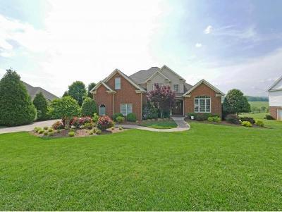 Jonesborough Single Family Home For Sale: 129 Laurel Ridge Drive