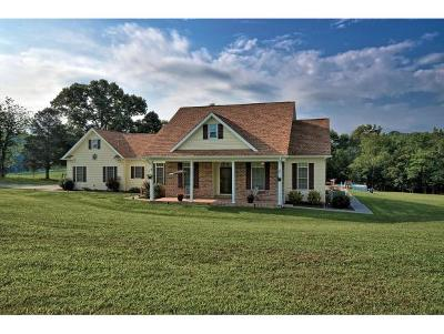 Telford Single Family Home For Sale: 603 Sugar Hollow Road