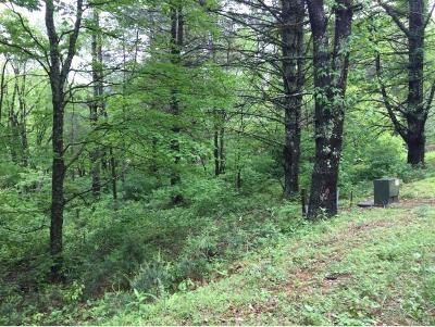 Butler Residential Lots & Land For Sale: 822 Sugar Hollow Rd.