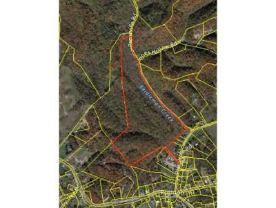 Bristol Residential Lots & Land For Sale: TBD N Paperville Road