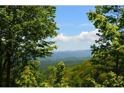 Hampton Residential Lots & Land For Sale: 1400 Walnut Mountain Rd.