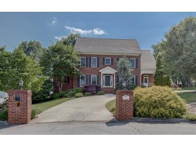Kingsport Single Family Home For Sale: 644 Red Oak Plantation Dr