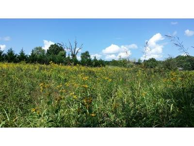 Piney Flats Residential Lots & Land For Sale: Austin Springs Road